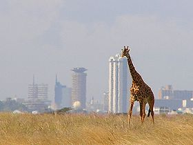 nairobi-travel-guide